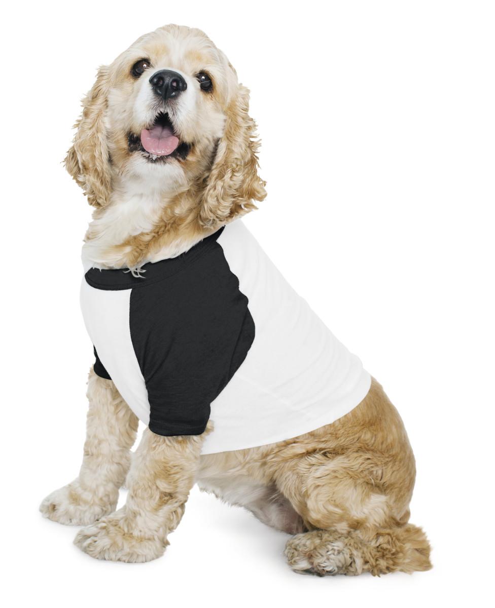 American Apparel Dog 3/4 Sleeve Raglan T